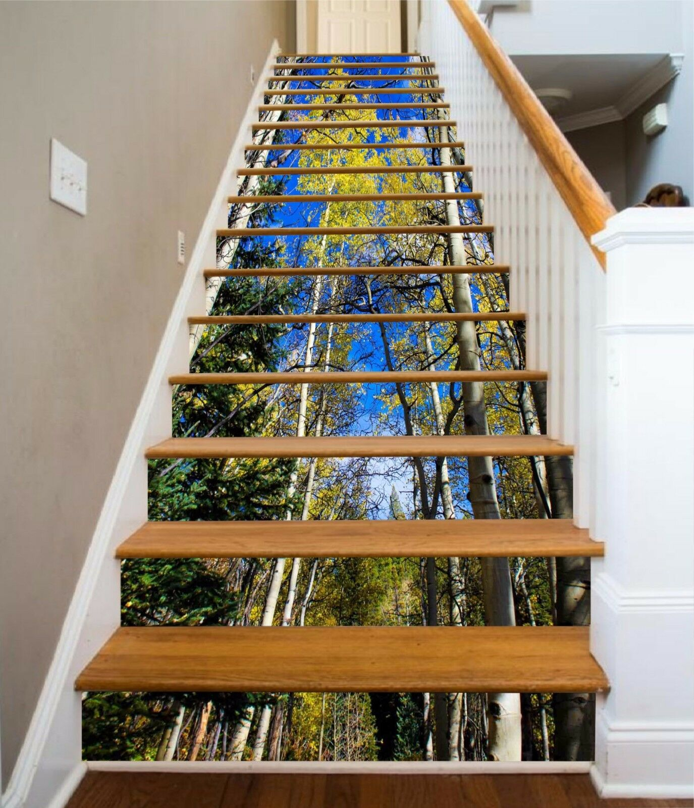 3D Forest Trees 988 Stair Risers Decoration Photo Mural Vinyl Decal Wallpaper AU