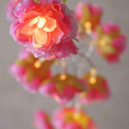 das DIY Batteriebetriebene Blumen Schnur feenhafte Lichter für Christnas