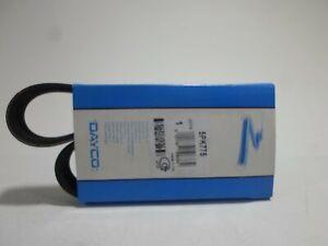 Riemen Poly-V-Gerippt Belt Dayco Citroen Saxo Micra 2 PEUGEOT 106 2