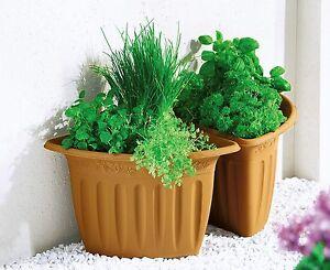 Fioriere Per Fiori ~ Angolo set vasi fiori vario vaso angolare fioriera per piante da