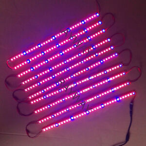 Image is loading Outdoor-Led-Grow-Light-Bar-SMD5630-DC-12V- & Outdoor Led Grow Light Bar SMD5630 DC 12V Plant Grow Strip Garden ...