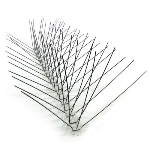 BirdBusters Stainless Steel Bird Spikes covers 24/' pigeon control X-wide ledges