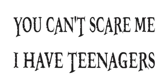 Funny STENCIL**You can't scare me I have teenagers**for Signs Crafts Scrapbook