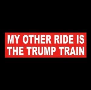 034-MY-OTHER-RIDE-IS-THE-TRUMP-TRAIN-034-Pro-Donald-BUMPER-STICKER-re-elect-2020-MAGA