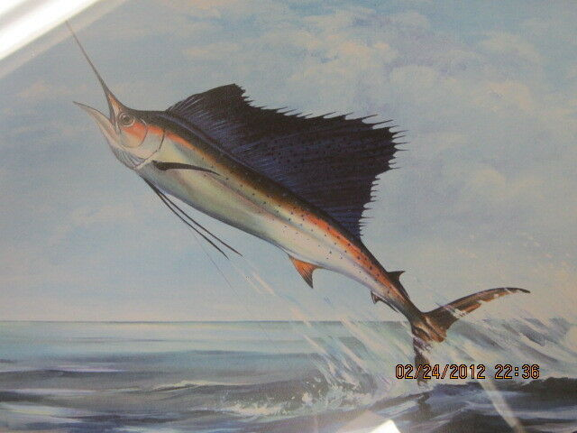 Marlin  fishing picture framed collectible