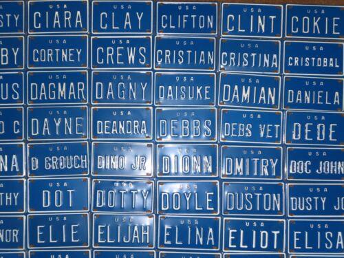 Vintage U S A Mini Bike Name Vanity Blue Metal License Plate Sign A-G