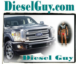 Diesel Guy .com Repair Exchange Truck Parts Online Domain Name For Sale URL