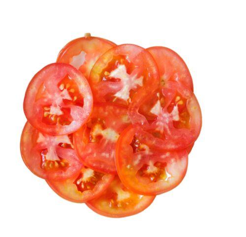 PREMIUM Schneidescheibe E10 Gemüseschneider GAM FAMA CELME RestoItalia Gastlando