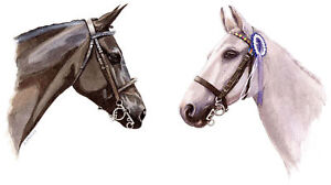 Image Is Loading 2 Horses POSTCARD Animal Painting Art Steve Greaves