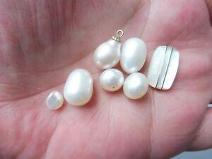 Edles Konvolut Perlen__echte, Hochwertige Perlen__! Clear-Cut-Textur