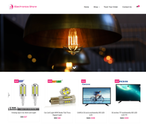 Home Decor Turnkey Website BUSINESS For Sale Profitable DropShipping