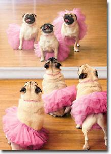 ballerina pugs funny dog birthday card  greeting card by avanti, Birthday card