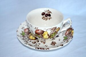 EUC-Vintage-Johnson-Brothers-AUTUMN-S-DELIGHT-Coffee-or-Tea-Cup-and-Saucer-Set