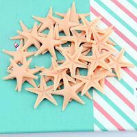 50pcs Starfish Sea Star Shell Beach Wedding Craft DIY Making Decor Miniatur DIY