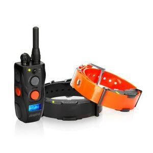 Dogtra-arc-training-800-800-meters-control-plus-1-necklace