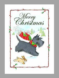 Scottish terrier christmas cards box of 16 cards 16 envelopes ebay image is loading scottish terrier christmas cards box of 16 cards m4hsunfo