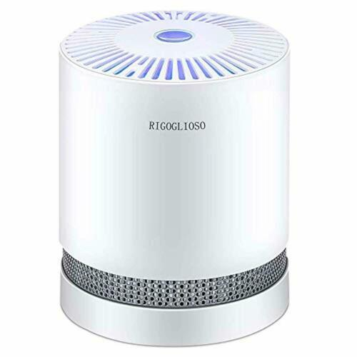 Deskt RIGOGLIOSO Luftreiniger Air purifier für zuhause mit echten HEPA Filtern