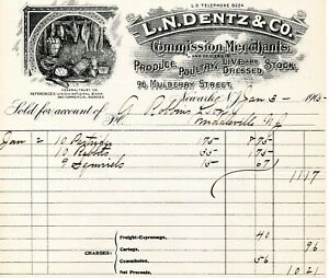 Jan 3, 1905 L.N. Dentz & Co. Produce and Poultry original paper invoice