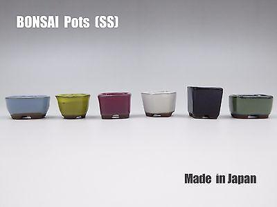 Japanese Bonsai Pot 6 pcs set Tiny Small Little plant Made in Japan ceramics SS