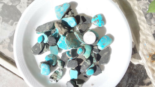 Superb 50 pc lot of stabilized backed Turquoise rough preform cabs!