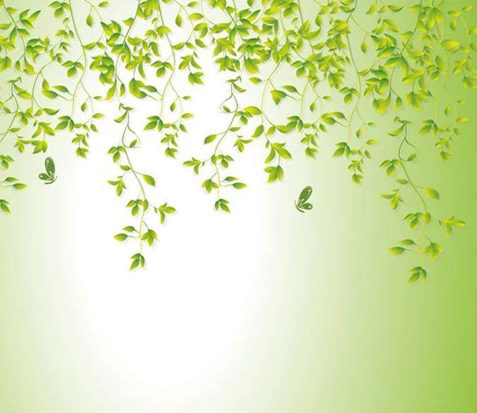 3D Die schöne Form, grün 9 Fototapeten Wandbild Fototapete BildTapete Familie DE