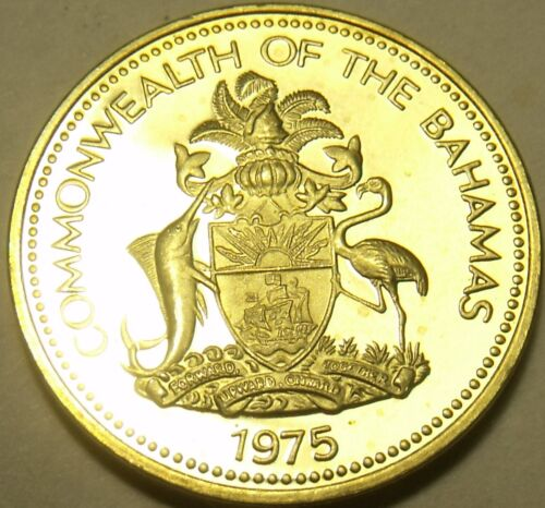 Rare Proof Bahamas 1975 Cent~Starfish~Only 29,000 Minted~Free Shipping
