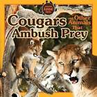 Cougars and Other Animals That Ambush Prey by Vic Kovacs (Paperback / softback, 2015)