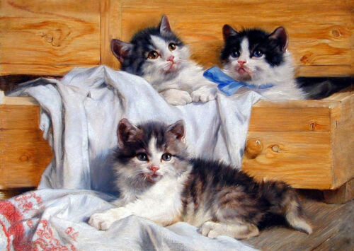 CHOP570 three cats animals hand painted oil painting on canvas art
