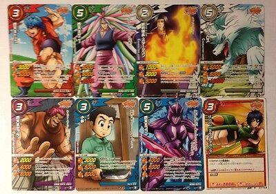 Sammeln Seltenes One Piece Miracle Battle Carddass Card Holo Carte P Op 55 A Japan Skb Skig Co Jp