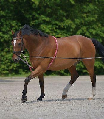 Qhp Waldhausen Morbido Cotone Grezzo Cavallo Equine Comfort Aiuti Alla Formazione Lunging Fune- Superficie Lucente