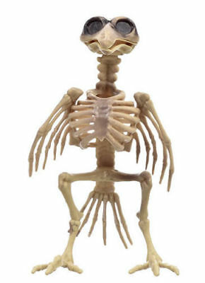 7.25 In. Set of 2 new Plastic Rat and bird Skeleton Decorations