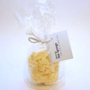 Hygan Natural Sponge 5031692000011