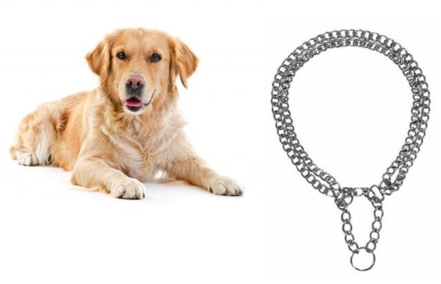 Dog Training Chrome Choke Collar Double Chain Row Semi Metal Choker by TRIXIE