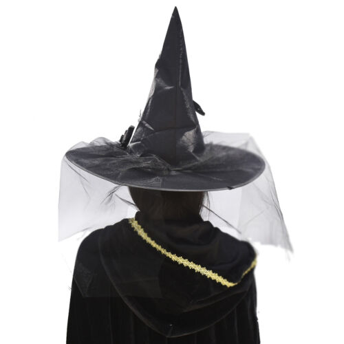 Adult Halloween Parties Luxury Witch Hat With Veil And Feather Witch Costume