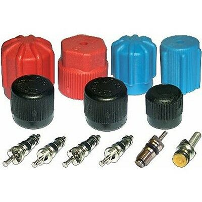 A//C System Valve Core and Cap Kit Global 1311422