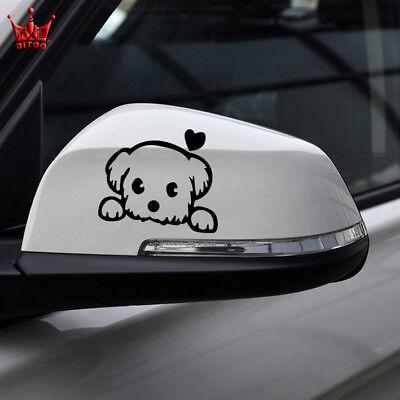 Hot Cute Cat for Auto Car//Bumper//Window Vinyl Decal Sticker Decals DIY Decor