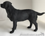 Black Labrador ornament quality lifelike figurine from Leonardo range.Gift boxed