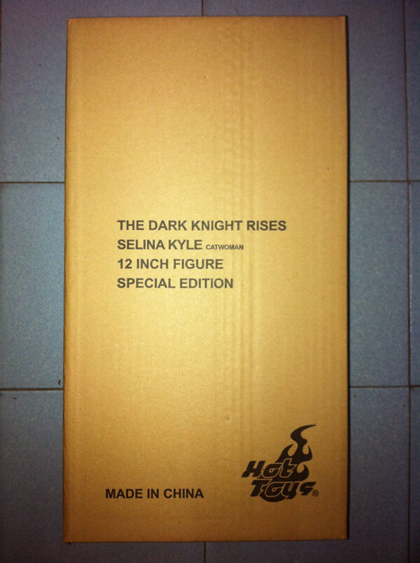 Hot Toys MMS188 Batman Dark Knight Rises 1 6 Selina Kyle Catwoman Anne Special