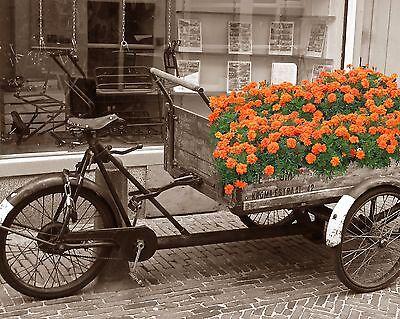 Orange Gray Black Sepia Room Decor Wall Art Vintage Wagon Photo Print Matted
