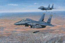 RONALD WONG F-15E Strike Eagle 4th Fighter Wing 336 Rockets Kobani ROBERT TAYLOR