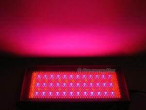 2x711 Led Red Blue Orange Grow Light Panel 60w Hydroponic