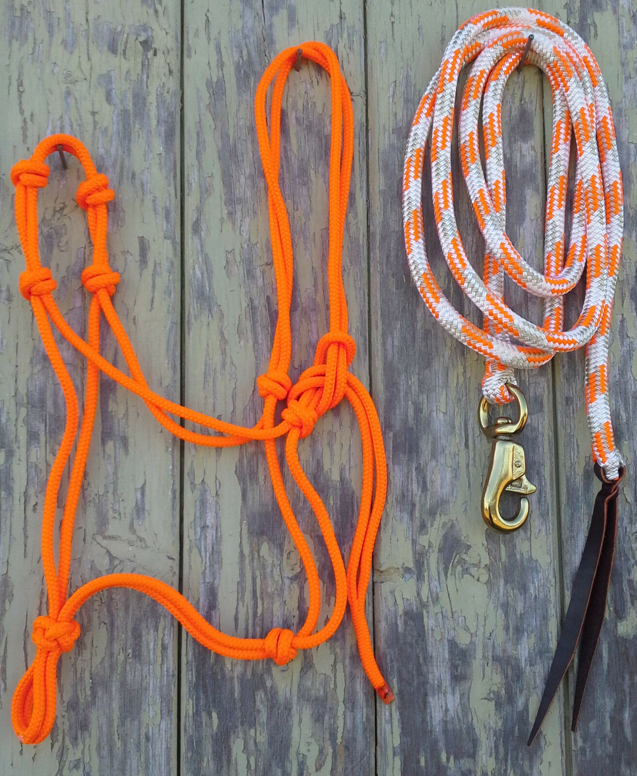 orange 4 Knot Rope Halter & 14ft Lead Rope 12mm Rope w Brass Trigger Bull Snap