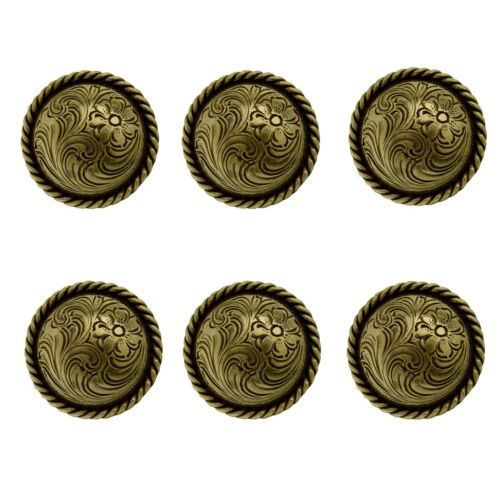 Set of 6 WESTERN HORSE TACK ANTIQUE BRASS ENGRAVED ROPE EDGE CONCHOS screw back