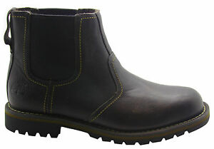 Timberland-Earthkeepers-Larchmont-Chelsea-Botas-hombre-cuero-marron-9706a-d82