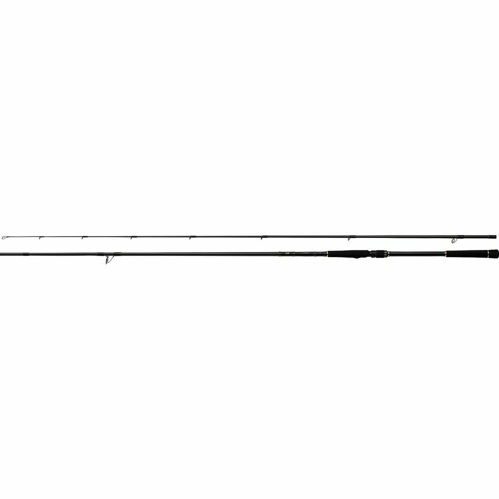 Daiwa Lateo R 100M Spinning Angelrute