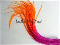 Feather Hair Extensions Multi Rainbow Color Medium Length 7-9 Long