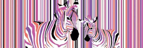 ZEBRAS IN COLOURED STRIPES BARCODE DOOR POSTER 158X53CM NEW WALL ART