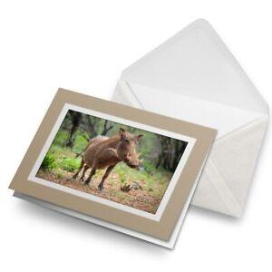 Greetings-Card-Biege-Wild-Pig-Boar-Hog-Kenya-Africa-15949