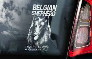 Belgica-Shepherd-a-Bordo-Coche-Ventana-Pegatina-Groenendael-Signo-Regalo-V01