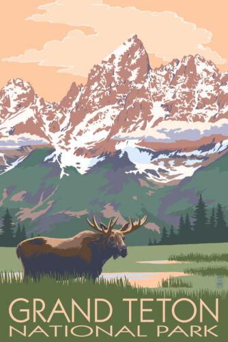 Posters, Wood /& Metal Signs Grand Teton Park WY Moose /& Mountains LP Artwork
